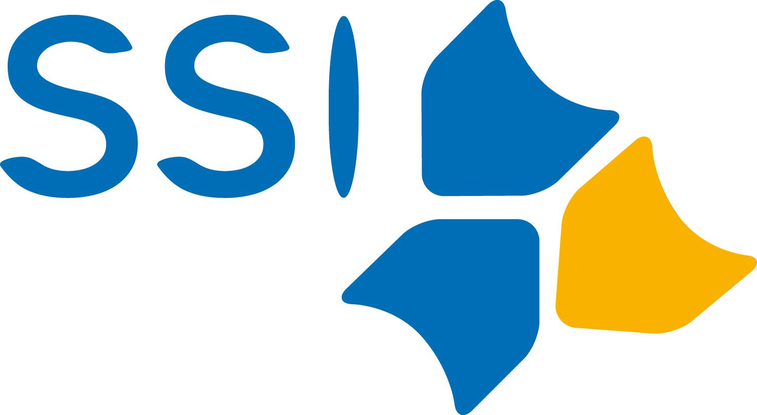SSI Sistemi Informativi